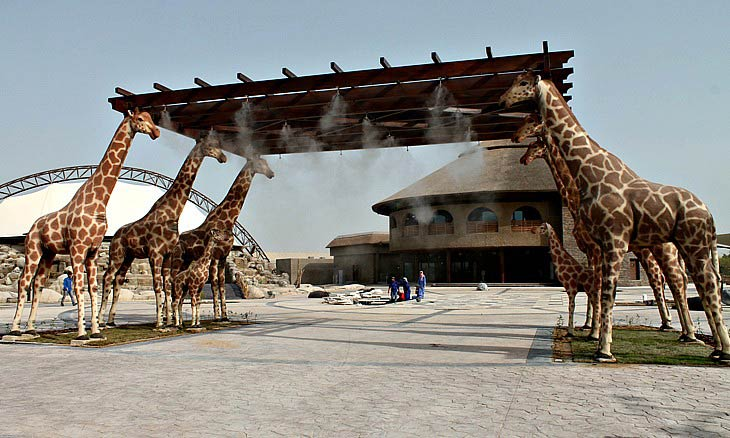 Safari-Park-in-dubai