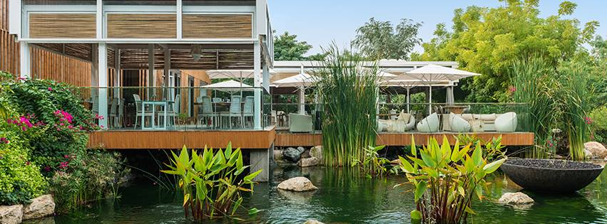 The Farm the hidden cafe in Dubai to explore