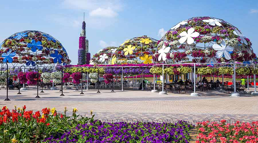 miracle garden dubai city